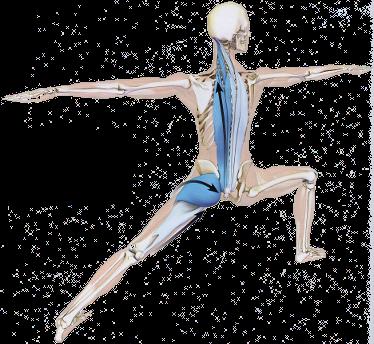 10 Days Therapeutic Yoga Training and Retreat - 2018 Yoga Teacher ...